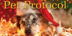 Pet Protocol for the Happy Holidays All Around