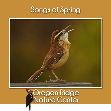 Songs of Spring