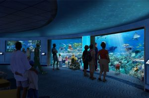 Read to Reef Program Lets Kids Earn Free Admission to Aquarium