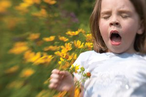 Spring Allergies: Nothing to Sneeze About