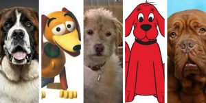Can You Name These 12 Famous Pups?