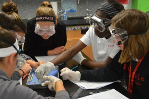 Discover how girls learn, lead and succeed at Maryvale