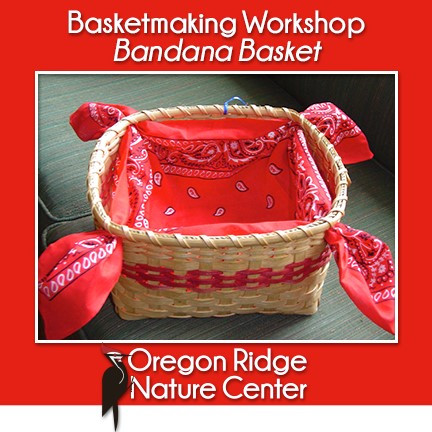 Basketmaking Workshop - Bandana Basket