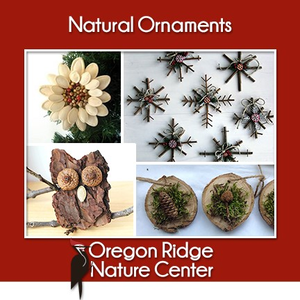 Natural Ornaments