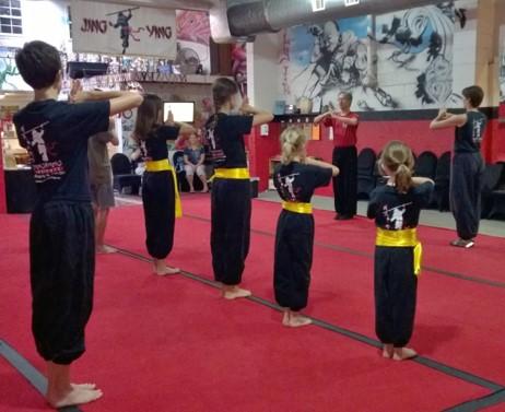 FREE Homeschool Kung Fu Class
