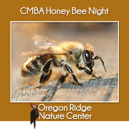 Central Maryland Beekeepers Association – Honey Bee Night