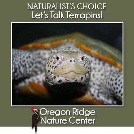 Naturalist's Choice – Let's Talk Terrapins!