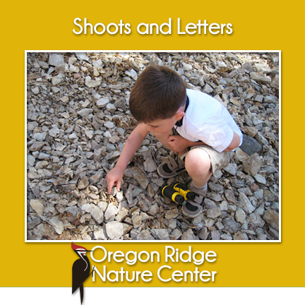 Shoots and Letters – Rocks and Minerals