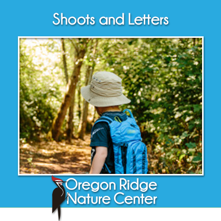 Shoots and Letters – Hiking