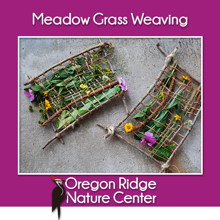 Meadow Grass Weaving