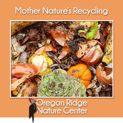 Mother Nature's Recycling