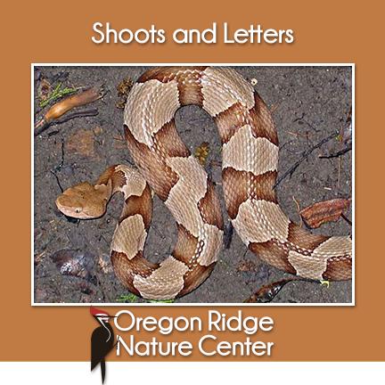Shoots and Letters - Poisonous vs. Venomous