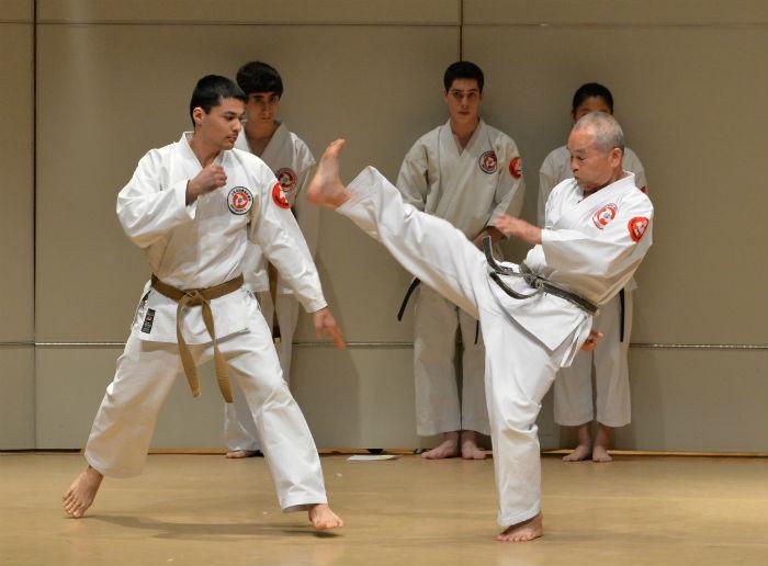 Mastering Infinite Strength: Asia's Martial Arts