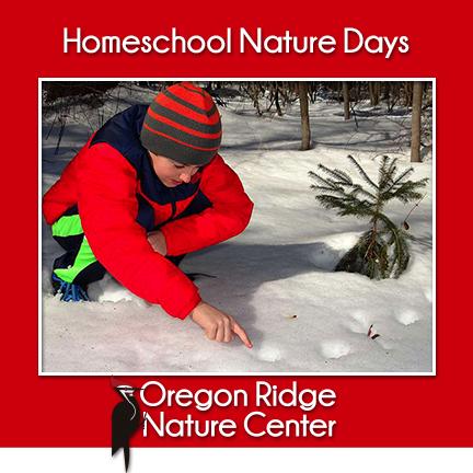 Homeschool Nature Days