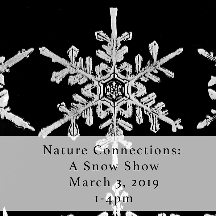 Nature Connections: A Snow Show