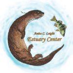 Salamander Hunt
