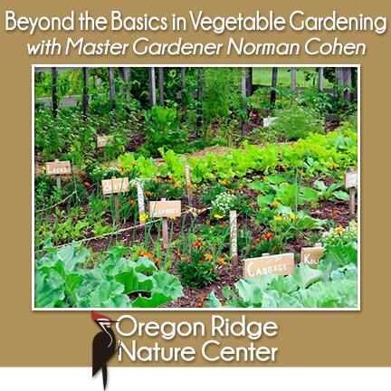 Beyond the Basics in Vegetable Gardening with Master Gardener Norman Cohen