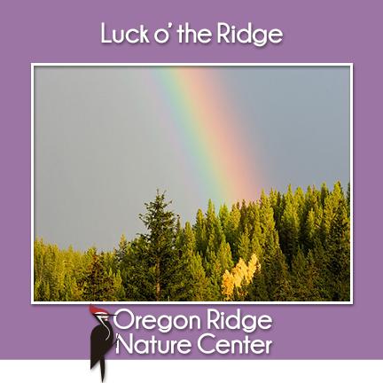 Luck o'the Ridge