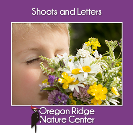 Shoots and Letters – Flowers