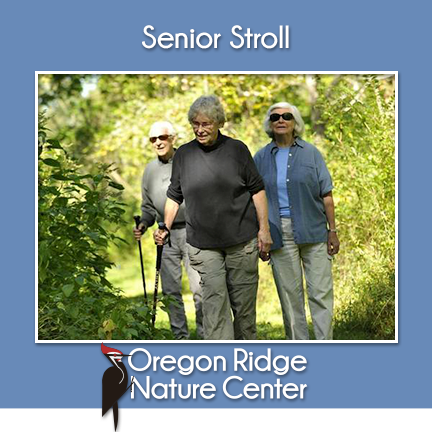 Senior Stroll