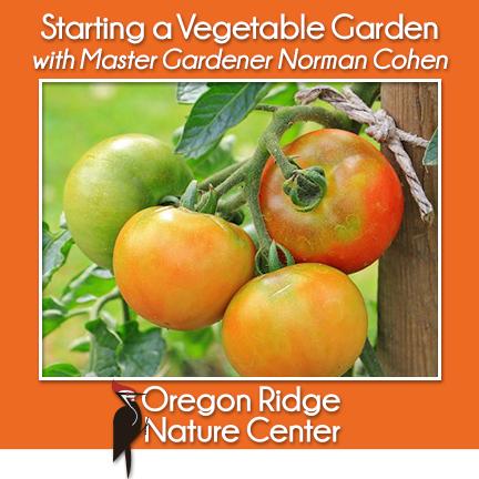 Starting a Vegetable Garden with Master Gardener Norman Cohen