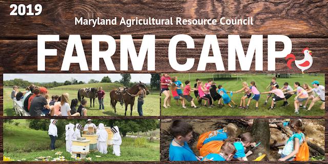 Farm Camp 2019
