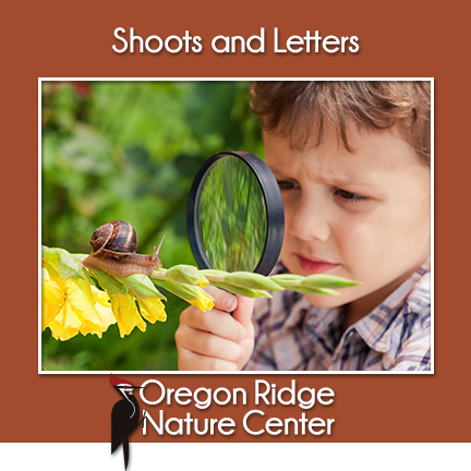 Shoots and Letters