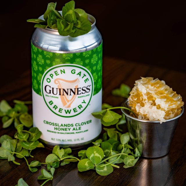 Where to Celebrate St. Patrick's Day