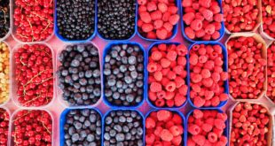 Where to Pick-Your-Own Berries in the Baltimore Area