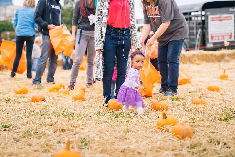 Harbor Harvest Fall Children's Festival 2017